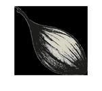echalote-ferme-des-volcans-recettes